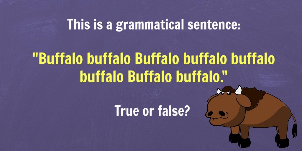 buffalo sentence